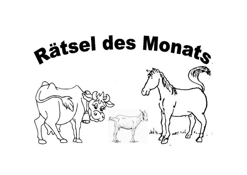 Rätsel Des Monats Grundschule Alfhausen
